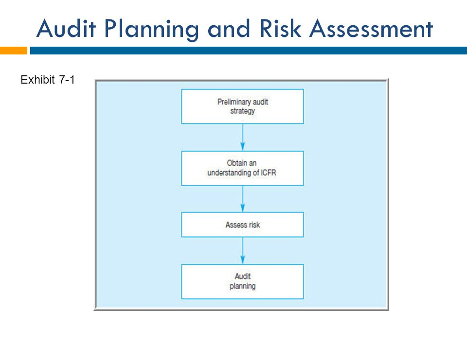 Audit Planning and Risk Assessment