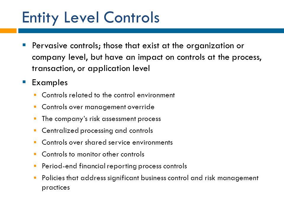 Entity Level Controls