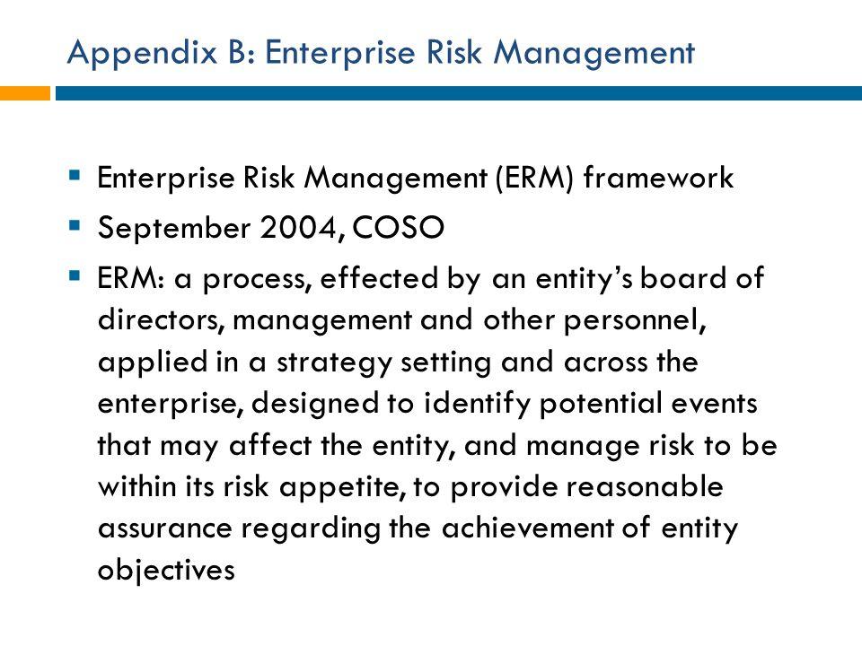 Appendix B: Enterprise Risk Management