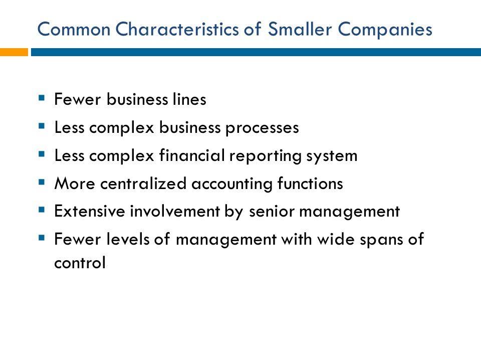 Common Characteristics of Smaller Companies