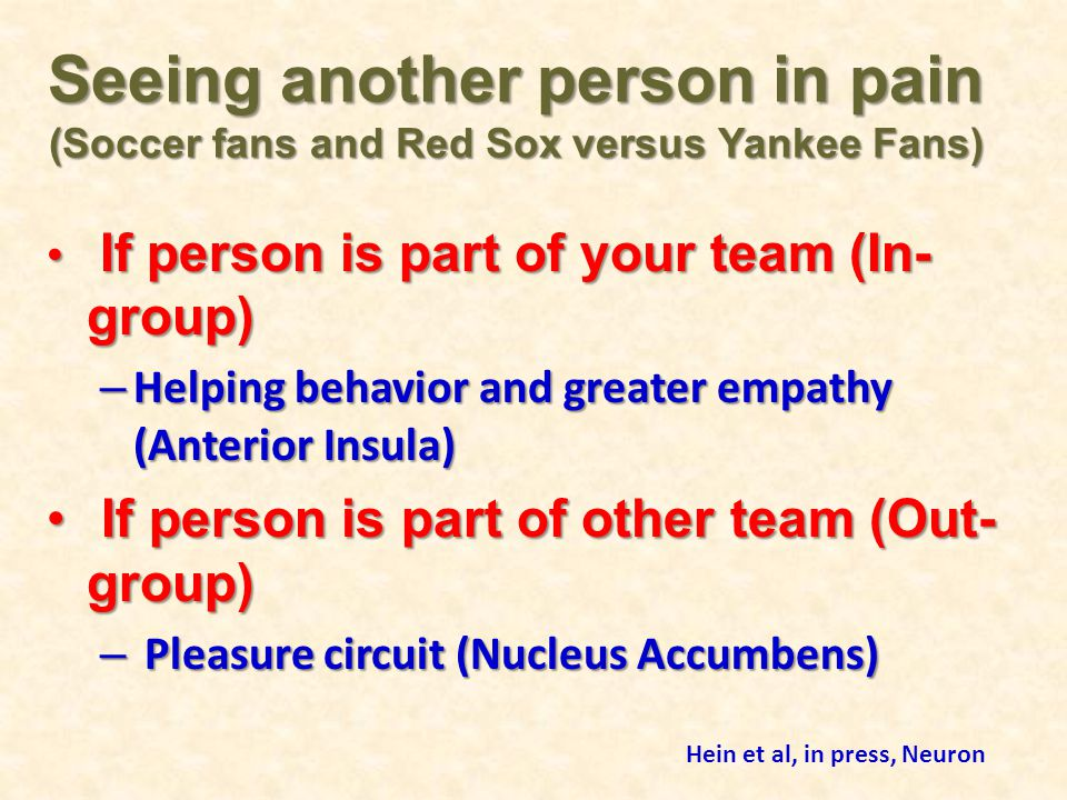 Seeing another person in pain (Soccer fans and Red Sox versus Yankee Fans)
