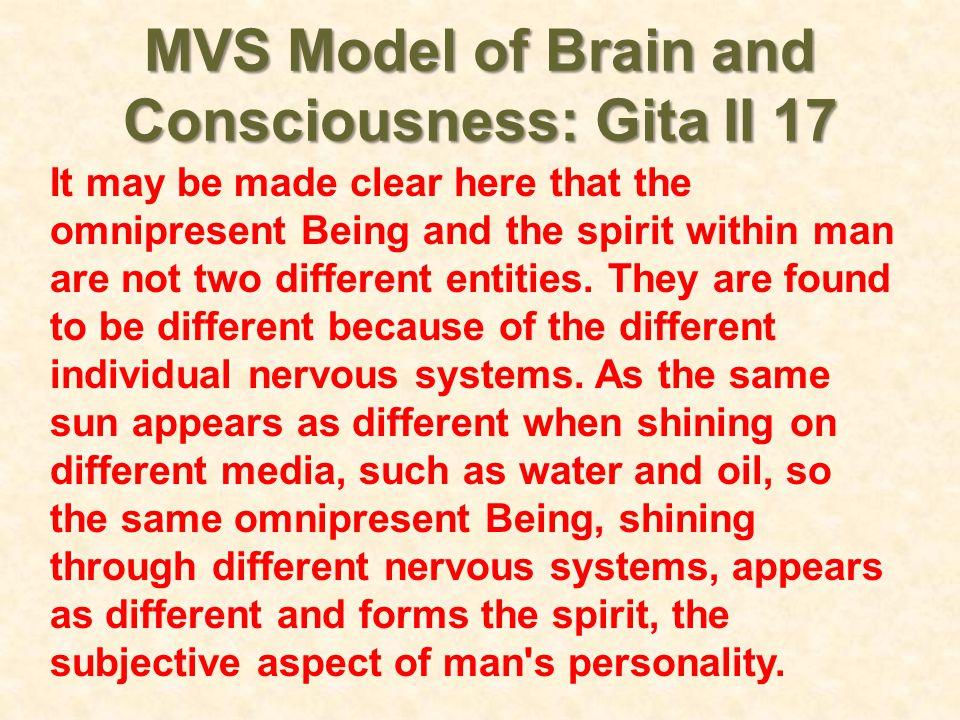 MVS Model of Brain and Consciousness: Gita II 17