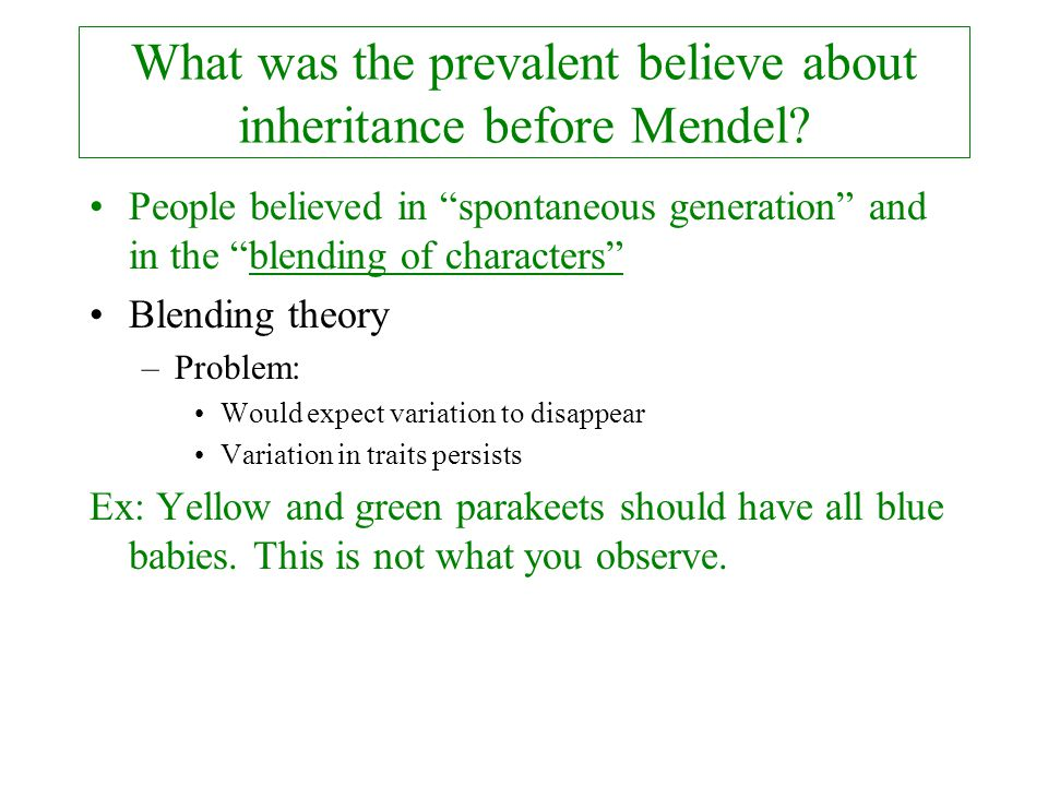 What was the prevalent believe about inheritance before Mendel
