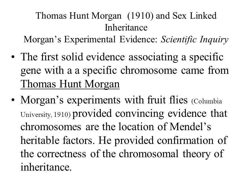 Thomas Hunt Morgan (1910) and Sex Linked Inheritance Morgan's Experimental Evidence: Scientific Inquiry
