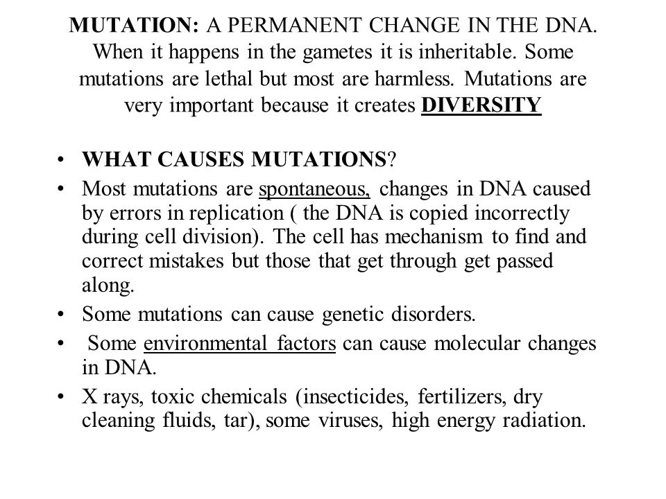 MUTATION: A PERMANENT CHANGE IN THE DNA