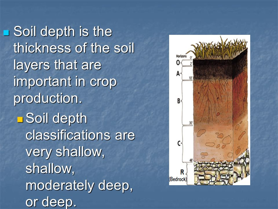 Soil depth is the thickness of the soil layers that are important in crop production.