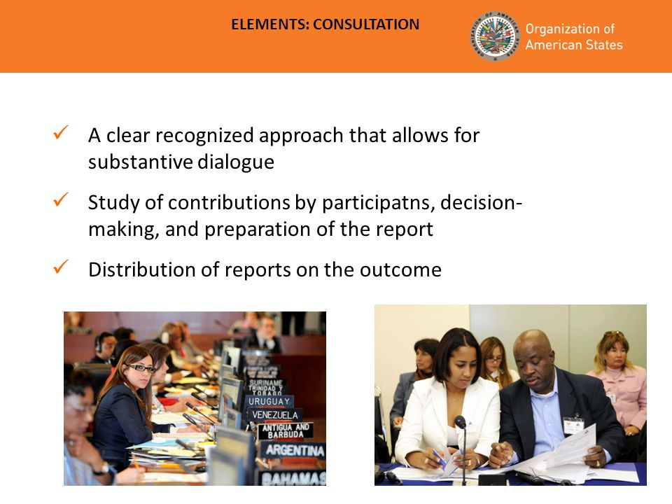 Civil Society Organizations ELEMENTS: CONSULTATION