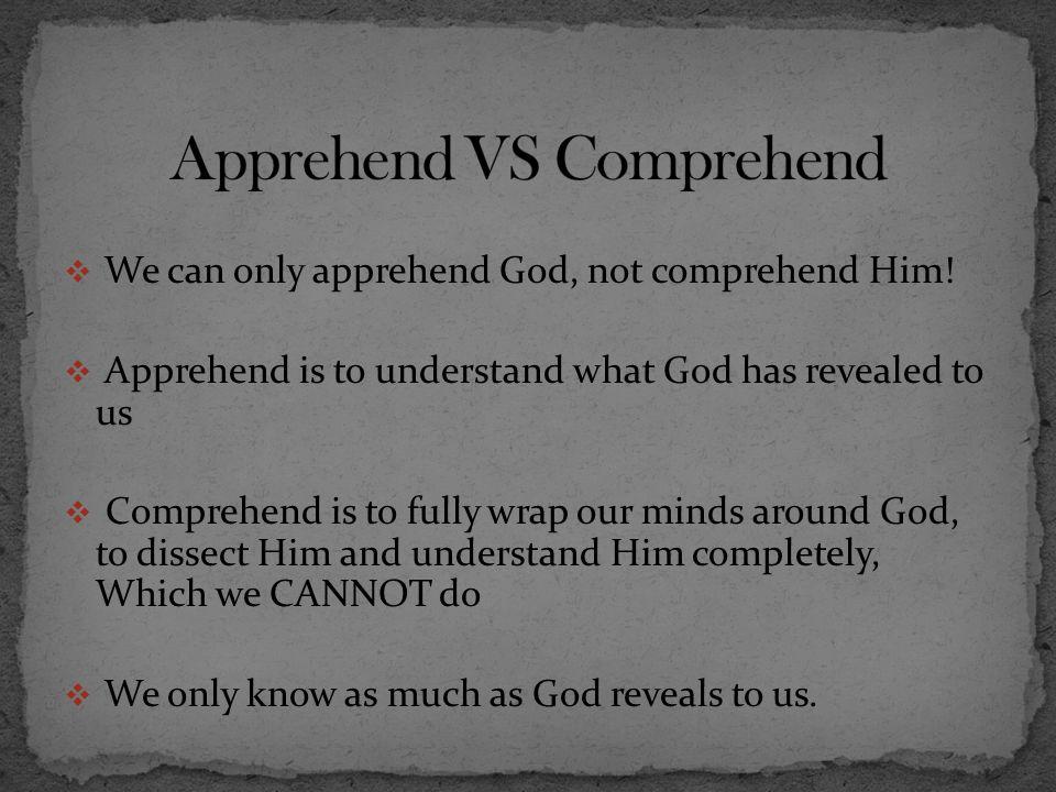 Apprehend VS Comprehend