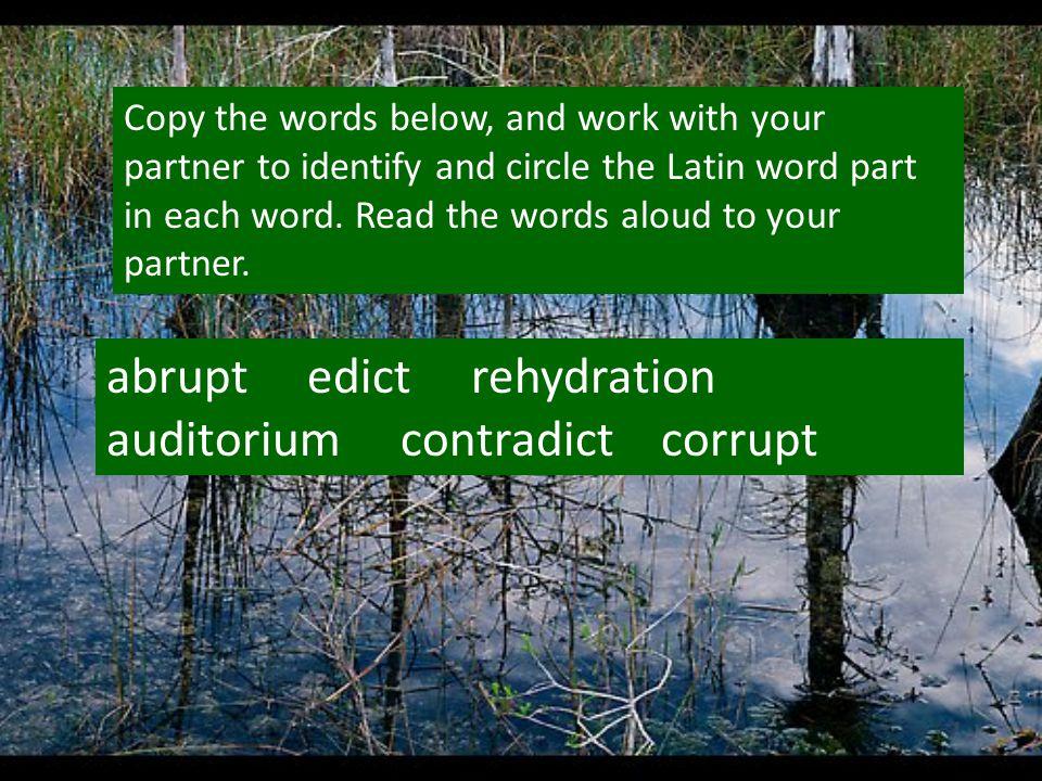 abrupt edict rehydration auditorium contradict corrupt