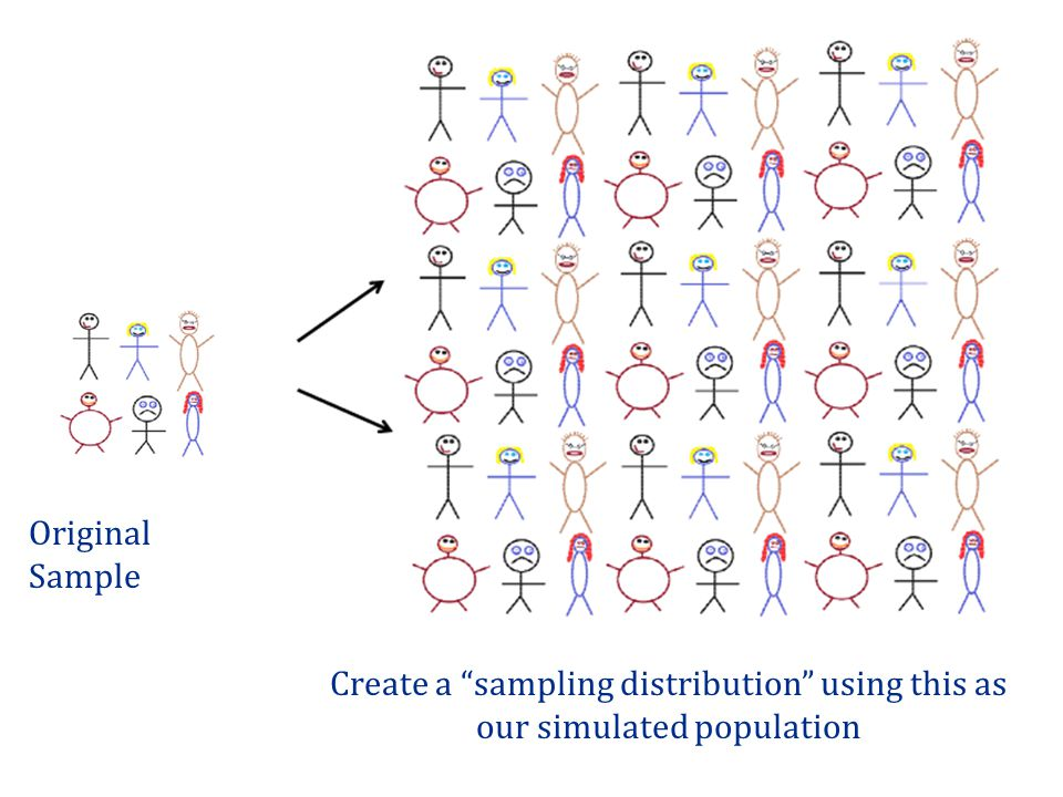 Original Sample Patti Create a sampling distribution using this as our simulated population