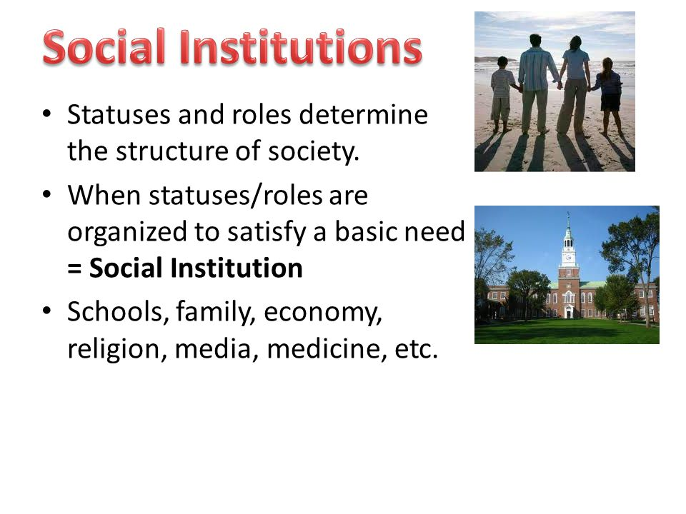 Social Institutions Statuses and roles determine the structure of society.