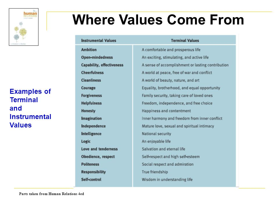 Where Values Come From Examples of Terminal and Instrumental Values