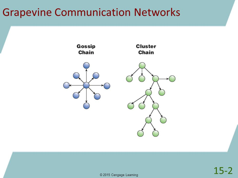 Grapevine Communication Networks
