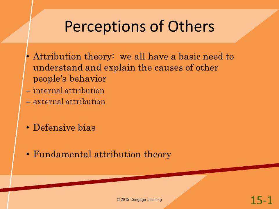 Perceptions of Others 15-1