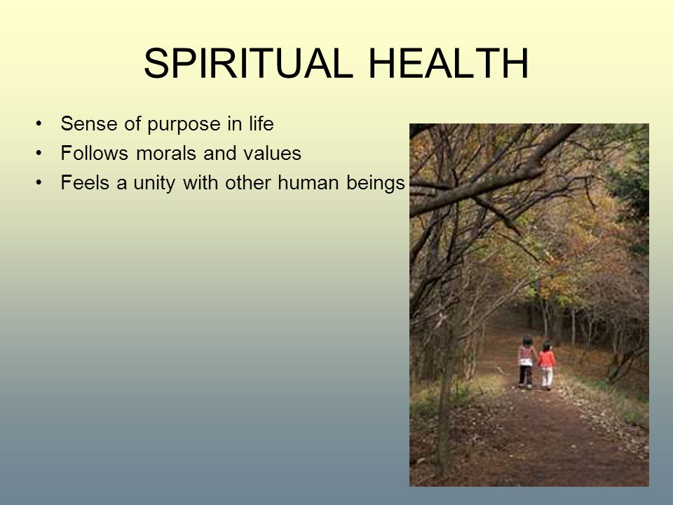 SPIRITUAL HEALTH Sense of purpose in life Follows morals and values