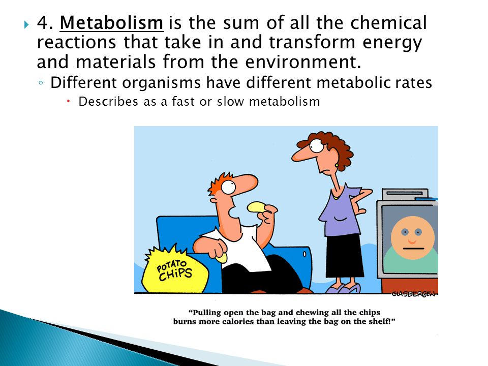 4. Metabolism is the sum of all the chemical reactions that take in and transform energy and materials from the environment.