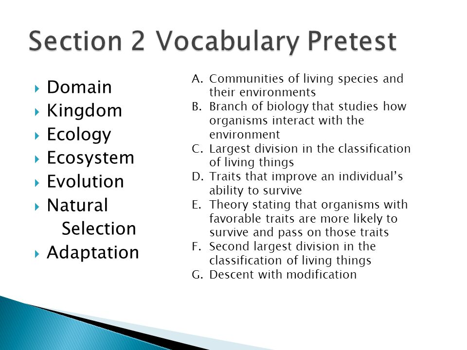 Section 2 Vocabulary Pretest