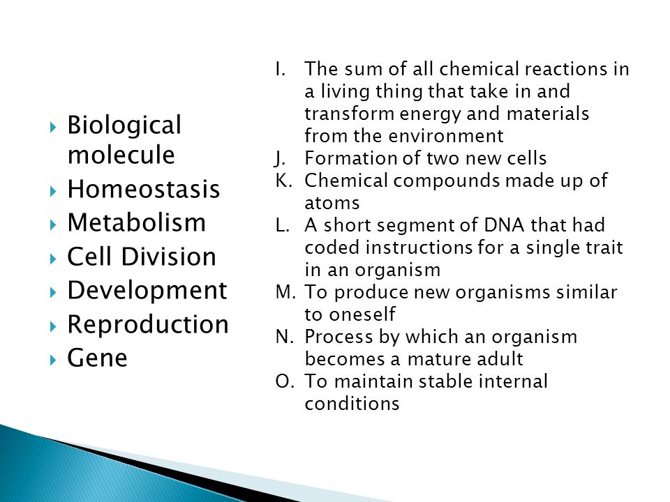 Biological molecule Homeostasis Metabolism Cell Division Development