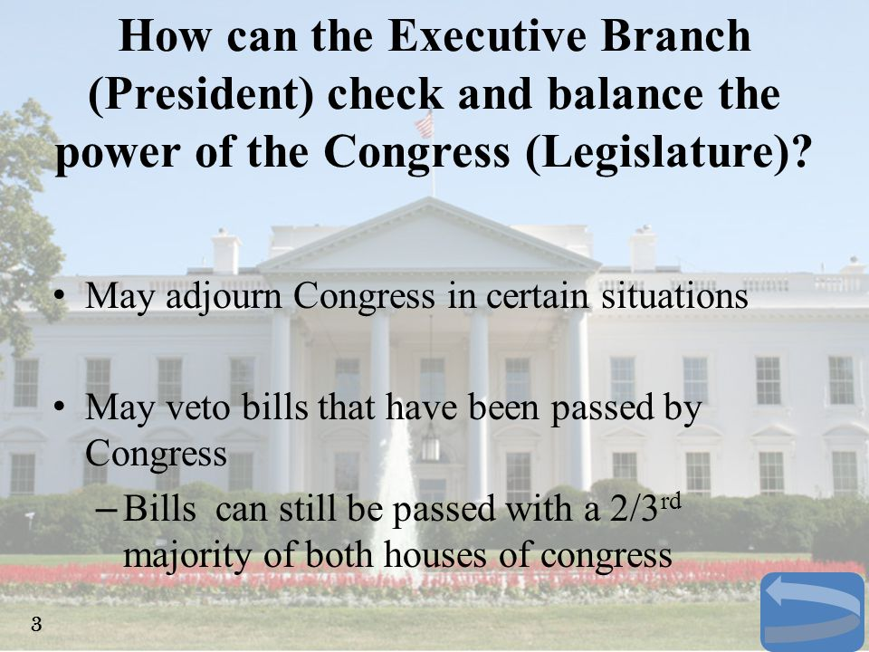 How can the Executive Branch (President) check and balance the power of the Congress (Legislature)