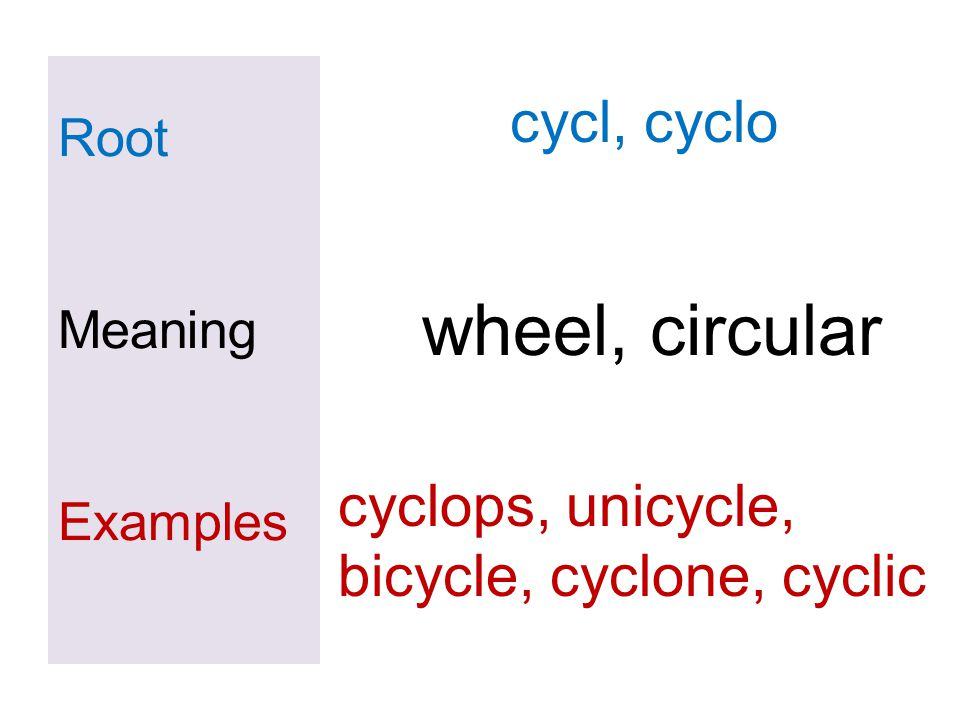 wheel, circular cycl, cyclo