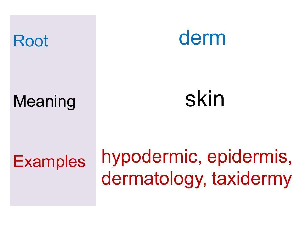 skin derm hypodermic, epidermis, dermatology, taxidermy