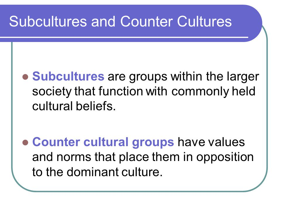 Subcultures and Counter Cultures