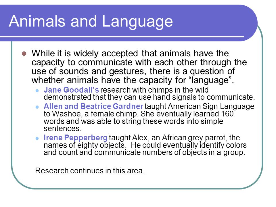 Animals and Language