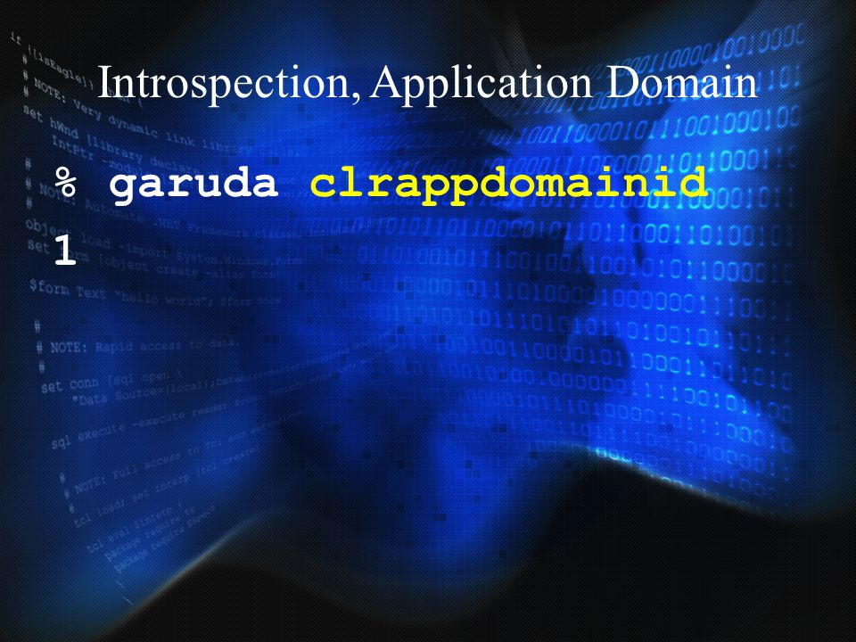 Introspection, Application Domain