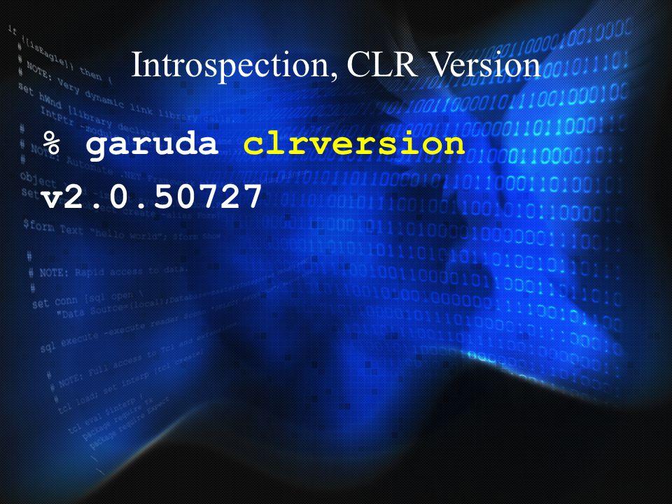 Introspection, CLR Version