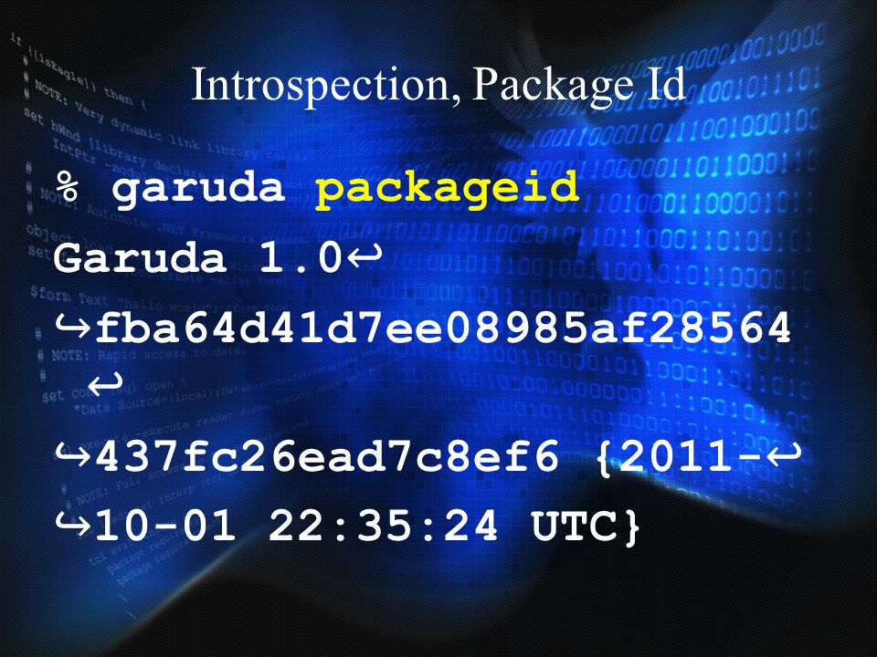 Introspection, Package Id