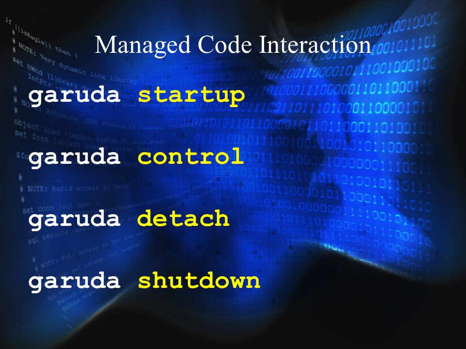 Managed Code Interaction