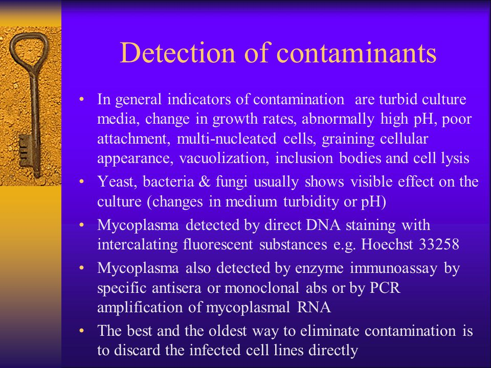 Detection of contaminants