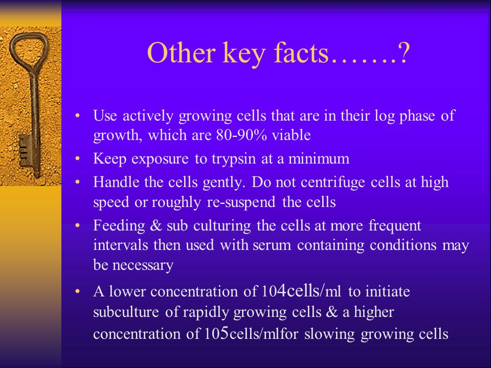 Other key facts……. Use actively growing cells that are in their log phase of growth, which are 80-90% viable.