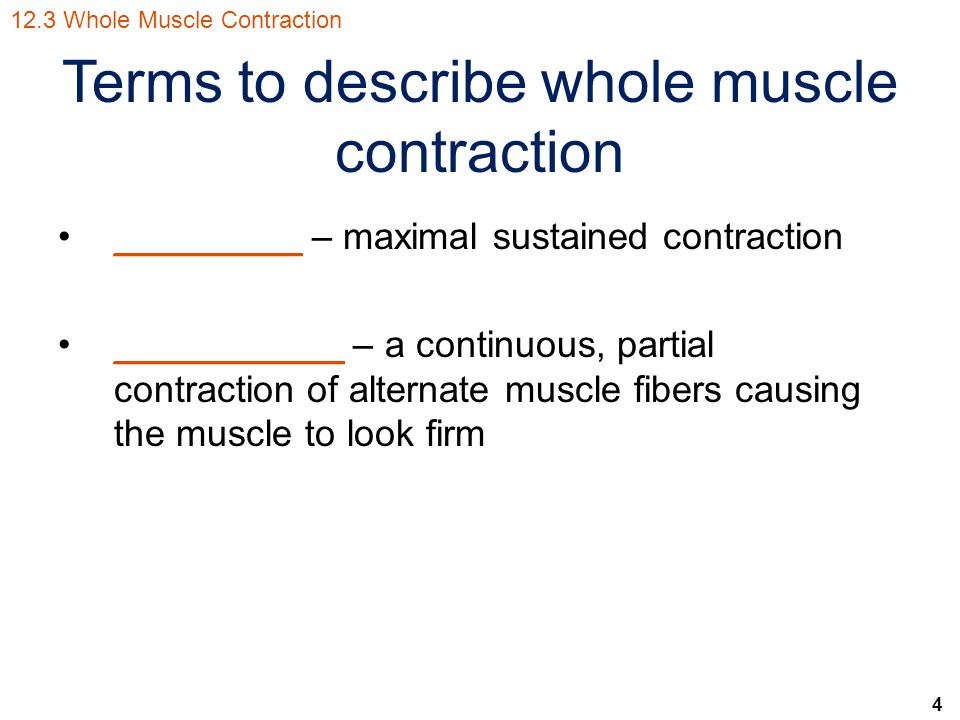 Terms to describe whole muscle contraction