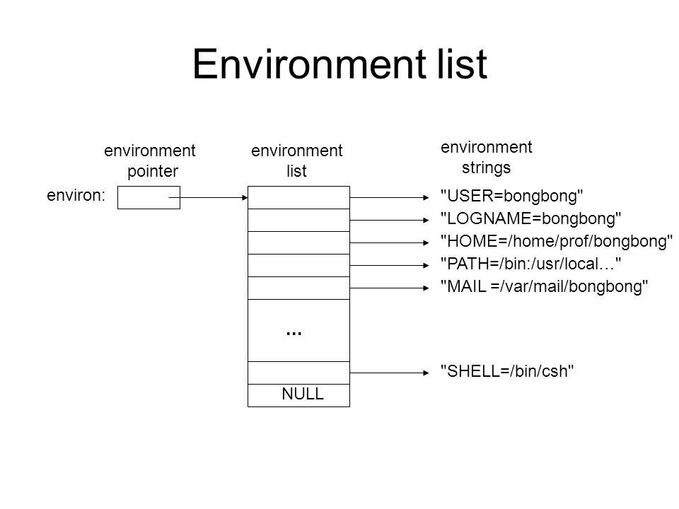 Environment list ... environment pointer environment list environment