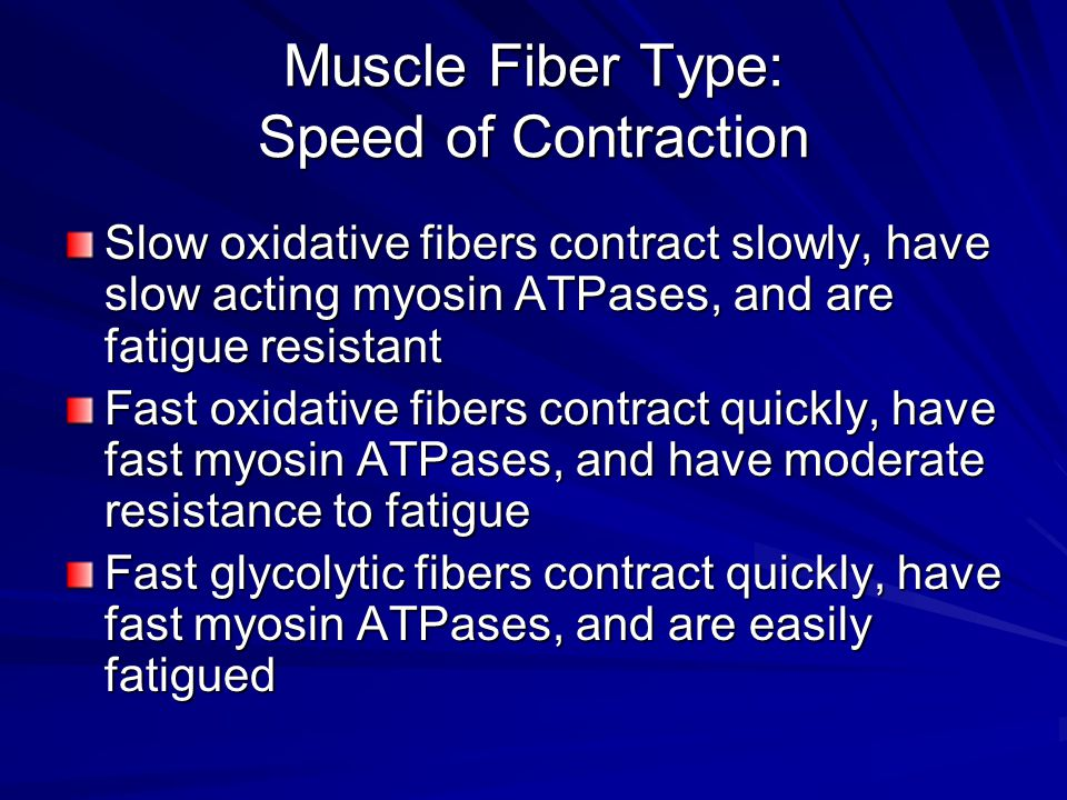 Muscle Fiber Type: Speed of Contraction