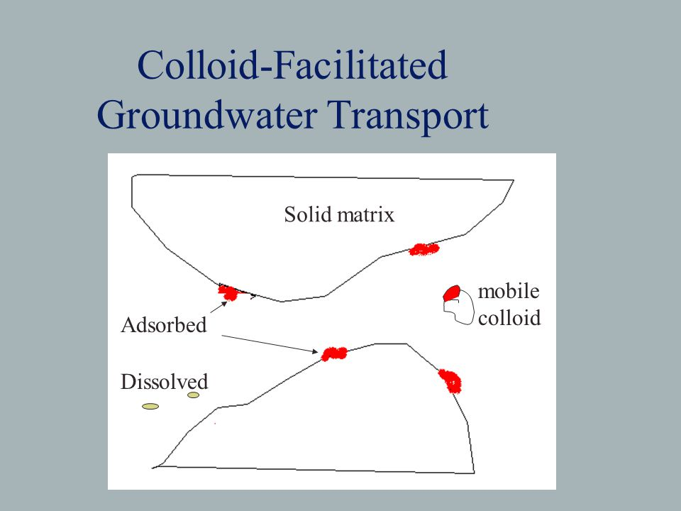 Colloid-Facilitated Groundwater Transport