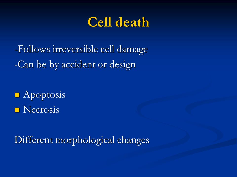 Cell death -Follows irreversible cell damage