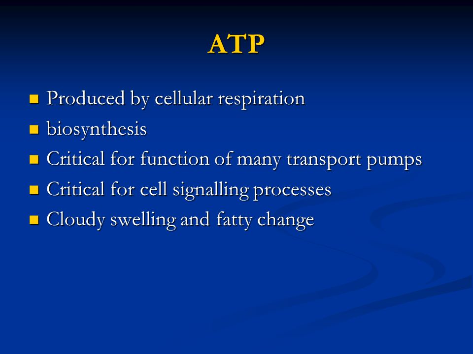 ATP Produced by cellular respiration biosynthesis