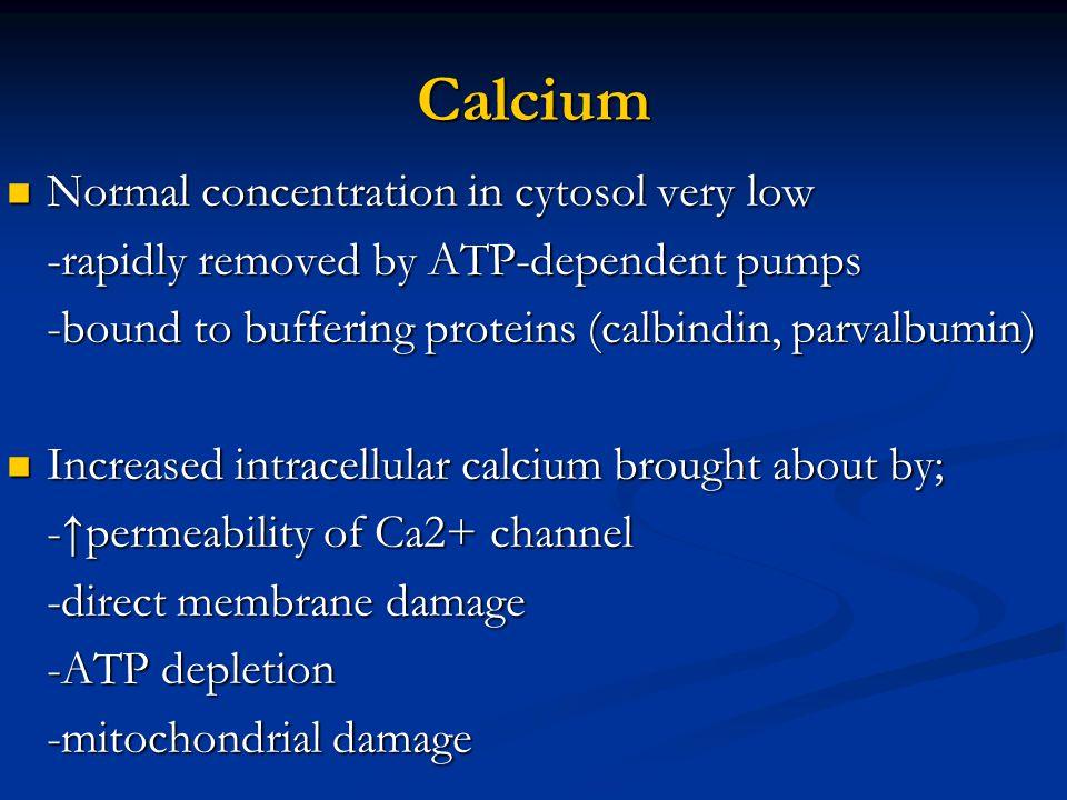 Calcium Normal concentration in cytosol very low