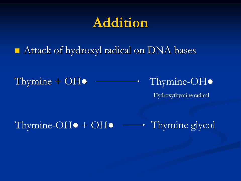 Addition Attack of hydroxyl radical on DNA bases Thymine + OH●