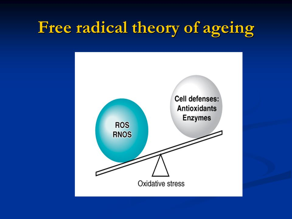 Free radical theory of ageing