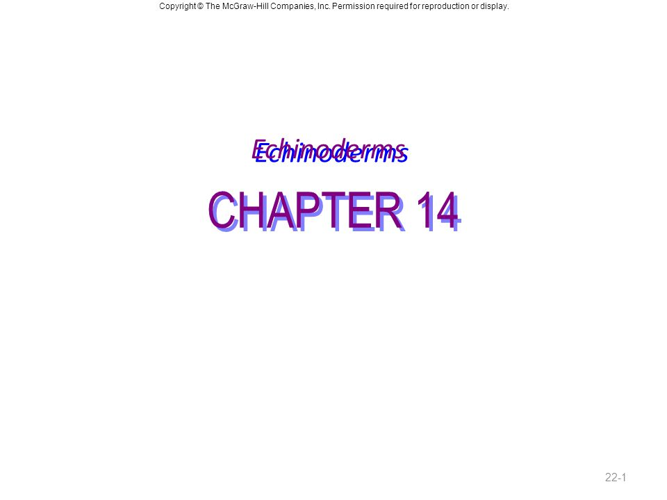 Echinoderms CHAPTER 14