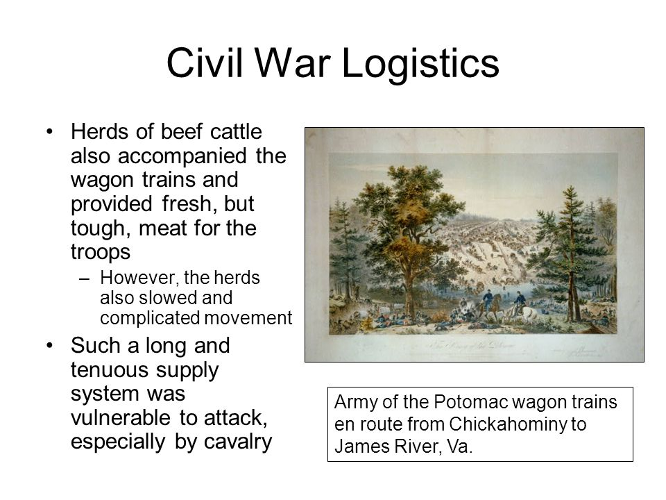 Civil War Logistics Herds of beef cattle also accompanied the wagon trains and provided fresh, but tough, meat for the troops.