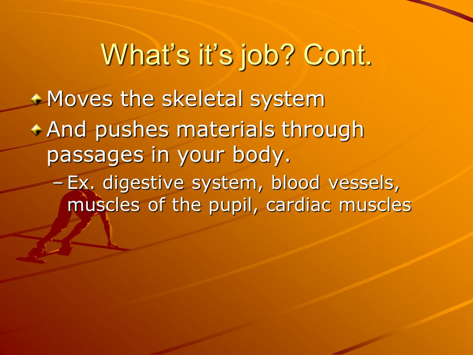 What's it's job Cont. Moves the skeletal system