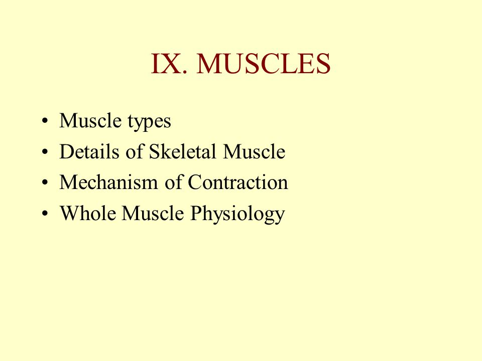 IX. MUSCLES Muscle types Details of Skeletal Muscle