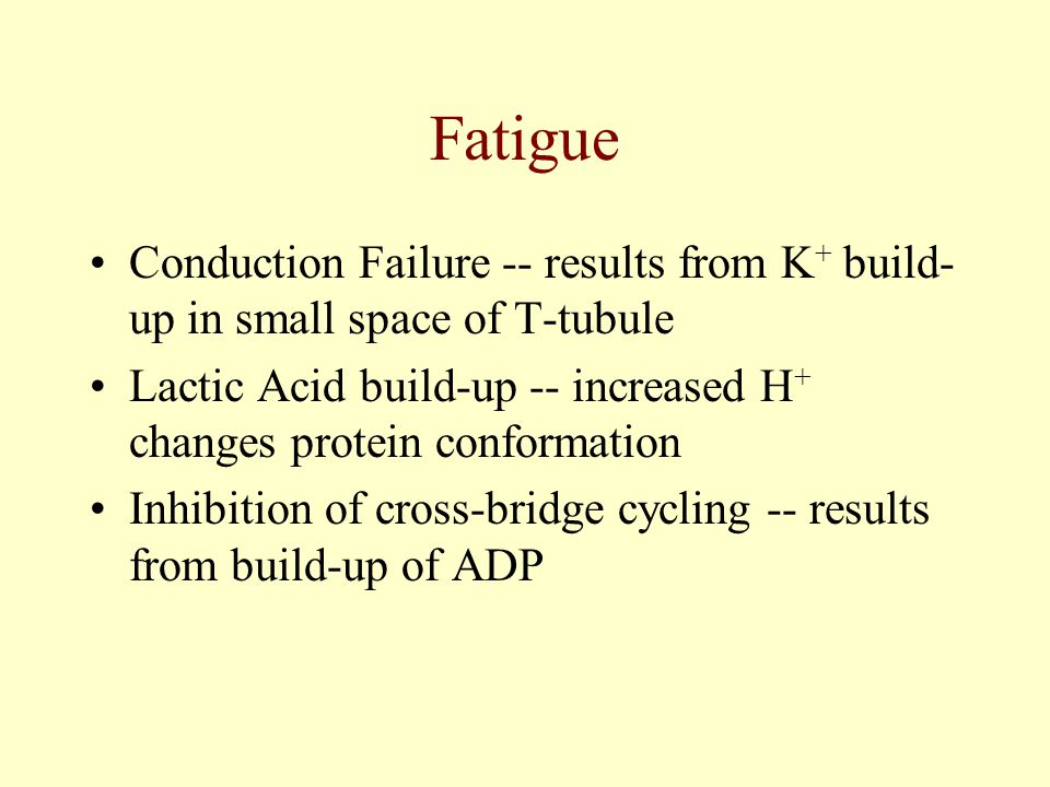 Fatigue Conduction Failure -- results from K+ build-up in small space of T-tubule. Lactic Acid build-up -- increased H+ changes protein conformation.