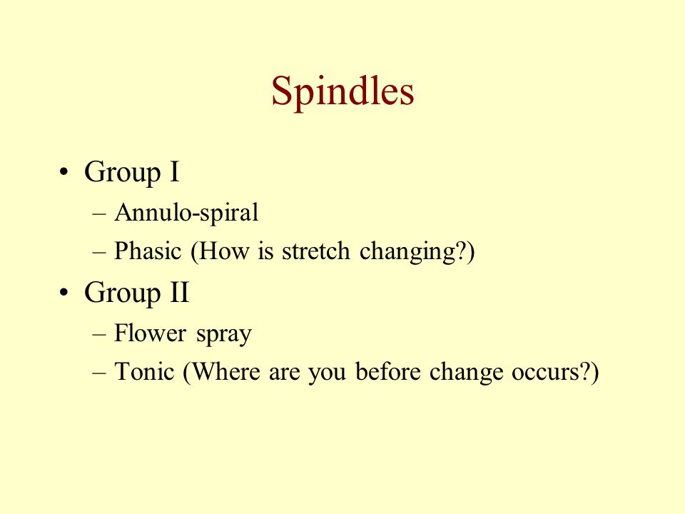 Spindles Group I Group II Annulo-spiral