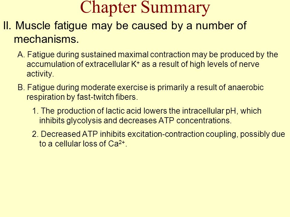 Chapter Summary II. Muscle fatigue may be caused by a number of mechanisms.