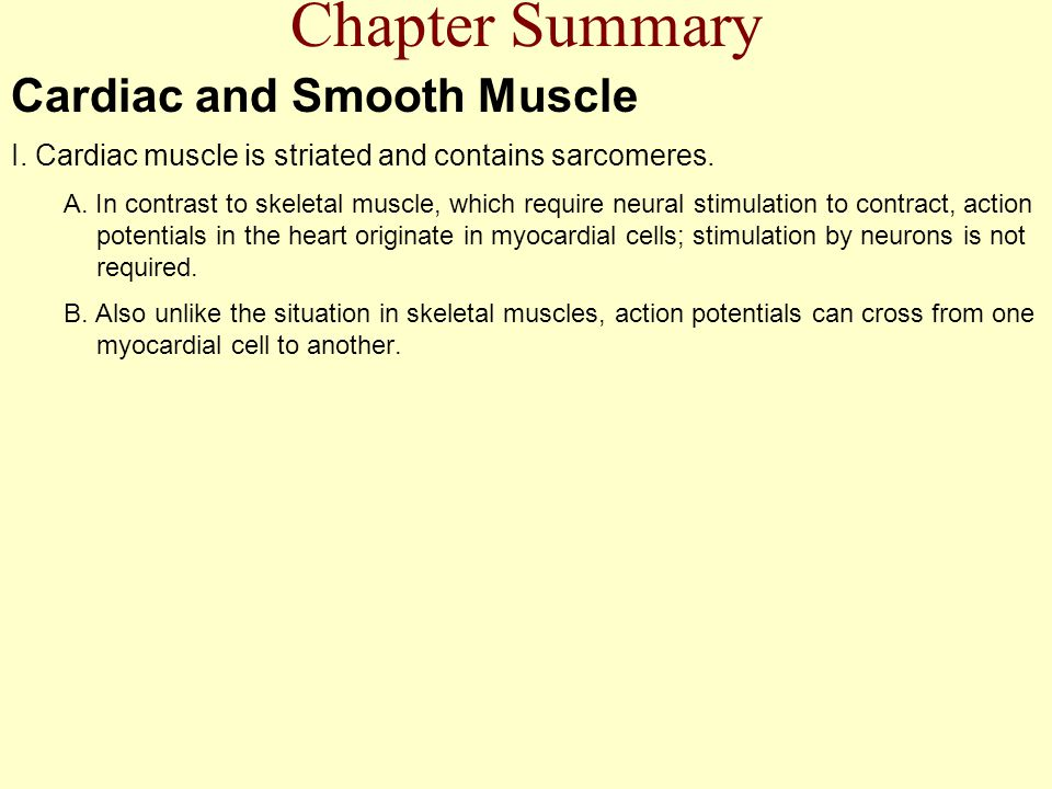 Chapter Summary Cardiac and Smooth Muscle